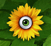 Eye On Nature — Stock Photo