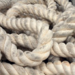Marine Rope — Stockfoto
