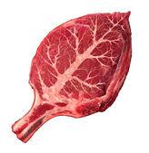 Ekologicznego mięsa — Zdjęcie stockowe