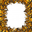 Butterfly Border Blank Frame — Stock Photo