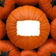 Pumpkin Blank Sign — Stock Photo