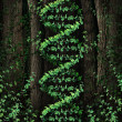 dna nature — Stock Photo