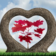 Heart Tree — Stock Photo
