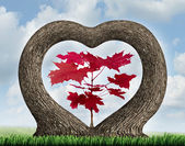 Heart Tree — Foto Stock