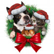 Pets Holiday Wreath — Stock Photo