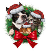 Pets Holiday Wreath — Stock Photo
