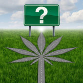Cannabis Marijuana Questions — Foto Stock