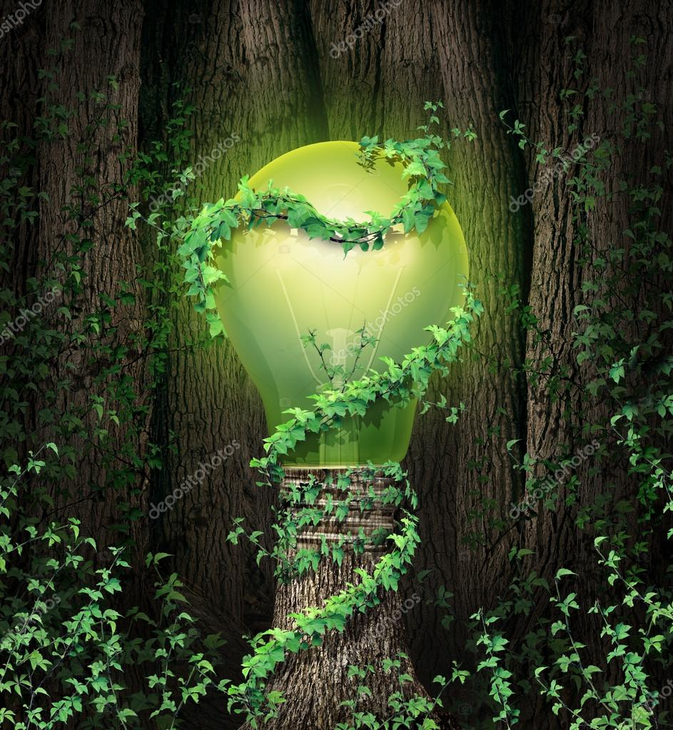 Что такое дизайн окружающей среды