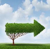 Growth Guidance — Stock Photo