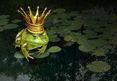 Frog Prince Concept — Stock Photo