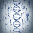 Male DNA — Stock Photo #45886645