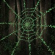 Green Web — Stock Photo