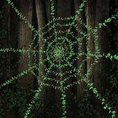 Green Web — Stock Photo