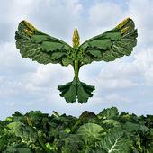 Health Food Freedom — Stock Photo