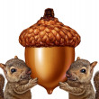 Постер, плакат: Squirrels Holding An Acorn