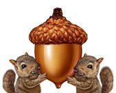 Squirrels Holding An Acorn — Stock Photo
