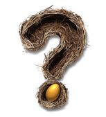 Retirement Nest Egg Questions — Stock Photo