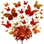 Autumn Tree Concept — Stock Photo