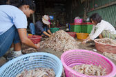 Locals inspect and grade shrimps — Stock Photo
