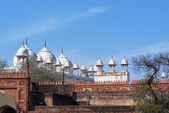 The Agra Fort, India — Photo