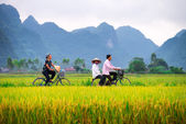 People on their bicycles — Stock Photo