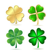 Set of four-leaf clovers isolated on white. — Stock Vector