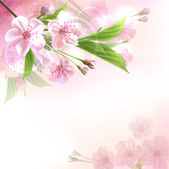 Blossoming tree branch with pink flowers — Stock Vector