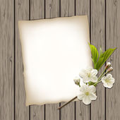 Blank paper with blossoming cherry branch — Stock Vector