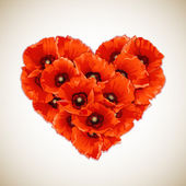 Flower heart of red poppies. — Vettoriale Stock