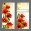 Set of summer banners with Red Poppies — Stock Vector