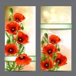 Set of summer banners with Red Poppies — Stock Vector #49925581