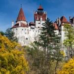 Bran medieval Castle, Transylvania, Romania — Stock Photo #15406167