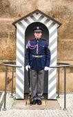Prague, Castle Guard — Stock Photo