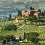 Tuscany rural landscape — Stock Photo
