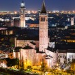 Verona skyline, night. Italy — Stock Photo #23917279