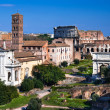 Roman Forum in Rome, Italy — Stock Photo #40112051