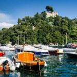 Portofino, Italian Riviera, Italy — Stock Photo #44934515