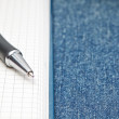 Named ballpoint pen. On the background of notebooks and jeans. — Stock fotografie