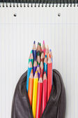 Leather pencil case with pencils in notebooks. — Stock Photo