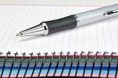 Named ballpoint pen. On the notebook into the cell. — Stock Photo