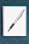 Ballpoint Pen. On the background of the notebook. — Stock Photo