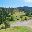 Summer landscape Carpathian road. — Stock Photo