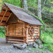 Stock Photo: Traditional wooden house in Carpathiforest.