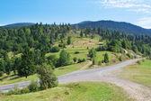 Summer landscape Carpathian road. — Stock Photo