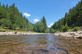 Carpathian landscape of the river up close. — Stock Photo