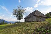 Classique vieille maison en bois dans un paysage des carpates. — Photo
