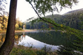 Morning landscape lake Synevir in the Carpathians. — Stock Photo