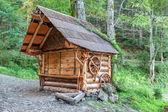 Tradycyjny drewniany dom w puszczy karpackiej. — Zdjęcie stockowe