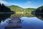 Wooden raft on the lake Synevyr summer. — Stock Photo