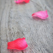 Stock Photo: Petals of pink roses on a wooden texture.